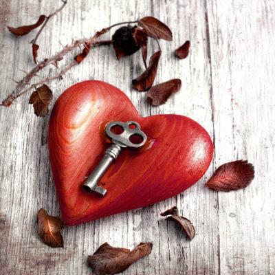 Liebesglück auf den ersten Blick