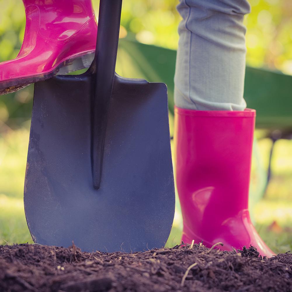 Sie vergrub ihre Scheidungsurkunde im Garten